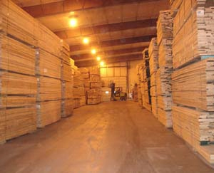 Kiln Dried Hardwood at Factory
